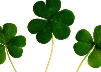 7 Lucky Social Media Campaigns Winning St. Patricks Day