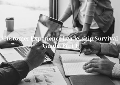 Customer Experience Leadership Survival Guide, Part 1