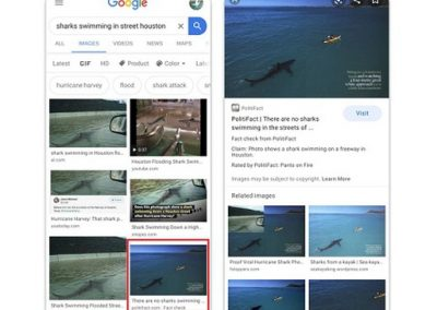 Google Adds New Fact Check Labels to Google Image Search Results