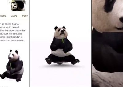 Google Brings Search Results to Life with New 3D/AR Examples