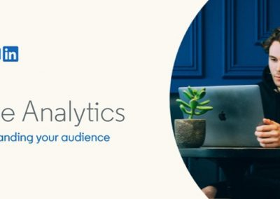 How to Use LinkedIn's Page Analytics Tools [Infographic]