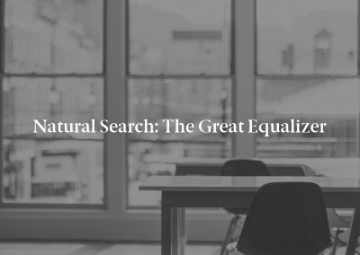 Natural Search: The Great Equalizer